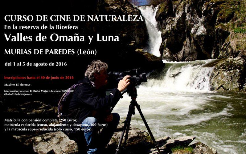 Proyecto Curso de Cine